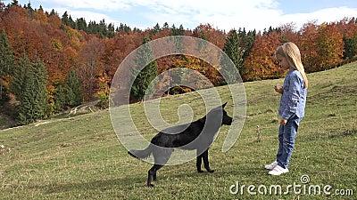 4.000.000 Kid Feeding Dog on Meadow in Park, Child Paking a Puppy, Girl en haar Pet stock footage