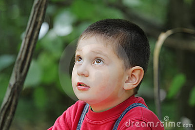 Kid in forest looking up
