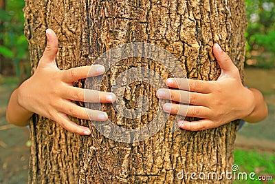 Hug a tree trunk