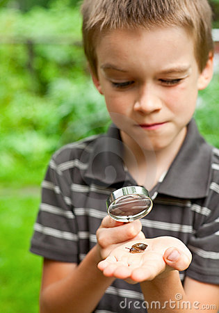 Kid observing snail