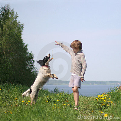 Free Kid Plays With Dog Stock Photos - 5925873
