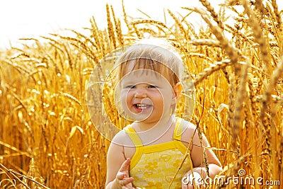 Kid in wheat