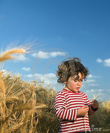 Kid in wheat field