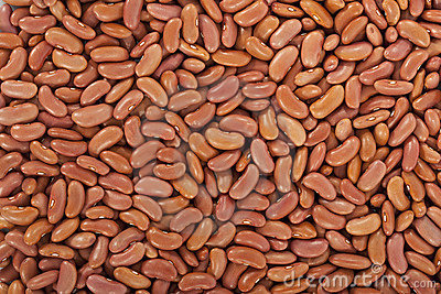 Kidney beans or red beans