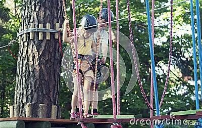 Kids in adventure park