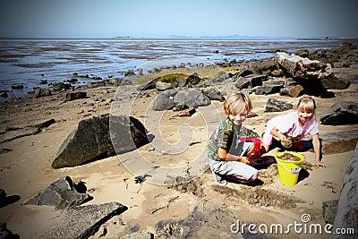 Beach Playtime