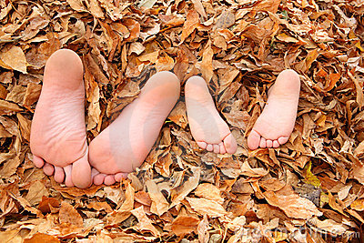 Kids buried in fall leaves