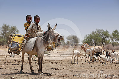 Kids on a donkey in Africa Editorial Stock Photo