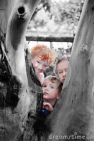 Kids looking around tree in nature garden