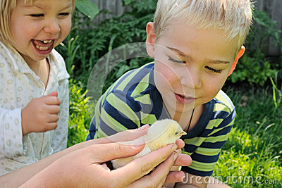 Kids and newborn chick