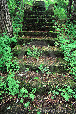 Kilbuck Bluffs Staircase - Illinois
