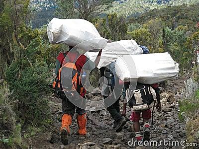Kilimanjaro porters Editorial Stock Photo