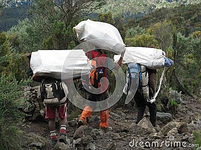 Kilimanjaro porters Editorial Image