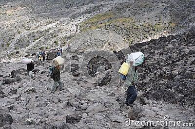Kilimanjaro porters Editorial Photo