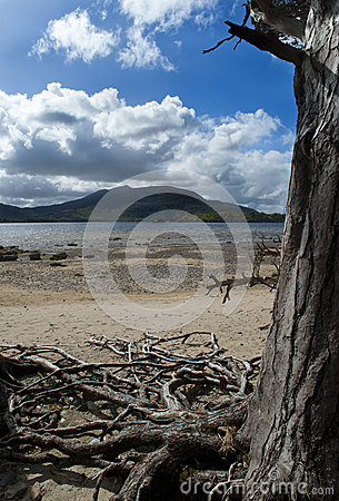 Killarney park narodowy