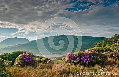 Killary Fjord, Connemara, Ireland