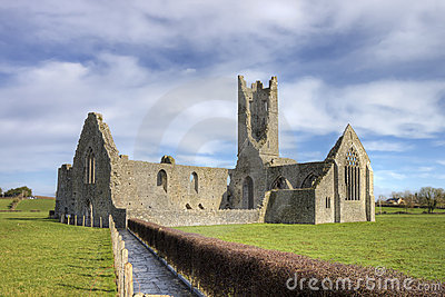 Kilmallock Abbey, dominican convent. Ireland.