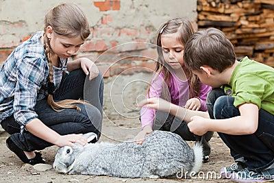 Kinder, die mit Kaninchen spielen