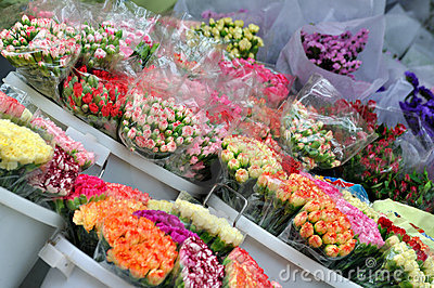 Kinds of flower in selling