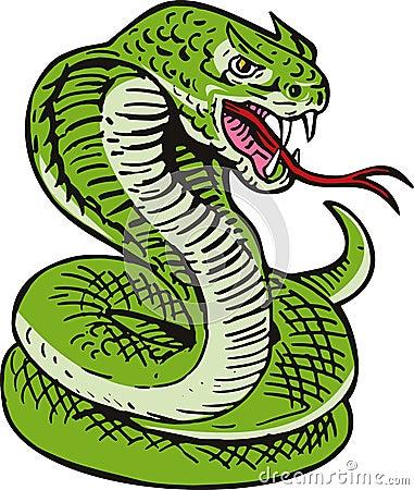 Free King Cobra Snake Stock Photos - 7163993