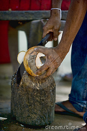 King coconut preparation