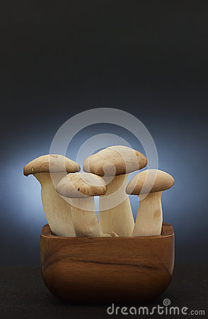 King Oyster Mushroom