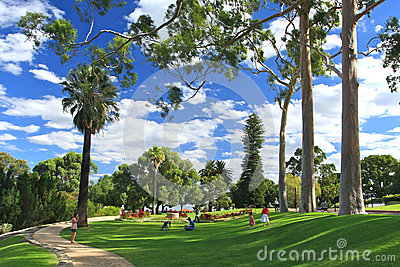 King s Park in Perth, Western Australia Editorial Photography