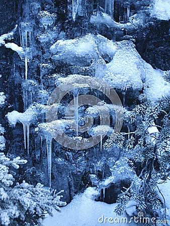 Kingdom of winter