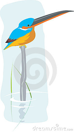 Free Kingfisher Royalty Free Stock Images - 3789929