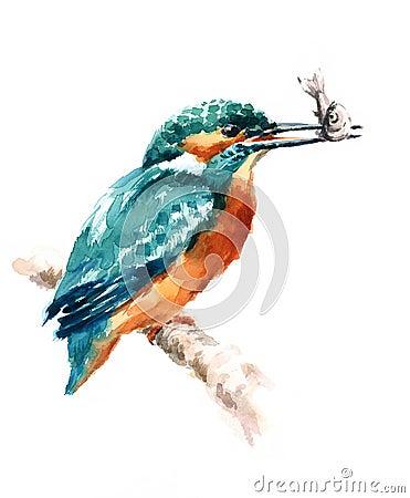 Free Kingfisher Bird Holding A Fish Watercolor Illustration Hand Drawn Stock Photos - 87839103
