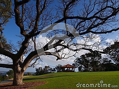 Kings Park Botanical Garden