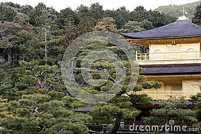 Kinkaku-ji (The Golden Pavilion)