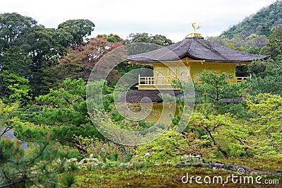 Kinkakuji Temple1
