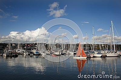 Kinsale sailing 002
