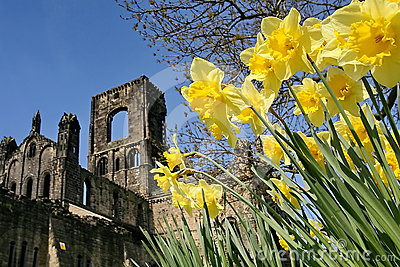 Kirkstall Abbey, North Yorkshire