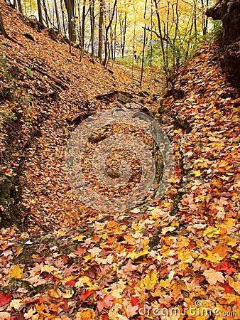 Kishwaukee Gorge Forest Preserve Illinois