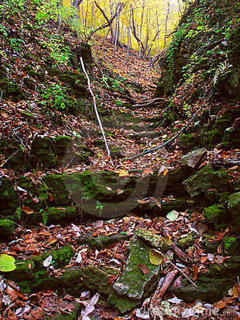 Kishwaukee Gorge in Illinois