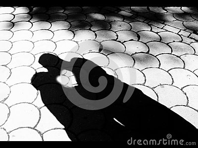 Shadow kiss download pdf