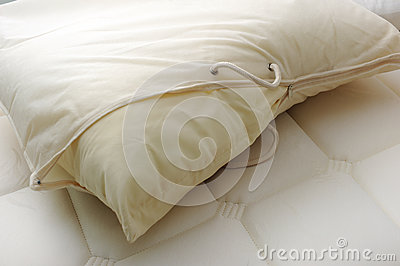 Kissen mit Abdeckung