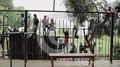 Kisumu, Kenia - 21. Mai 2018: Gruppe Kinder von Afrika-Aufstieg und sitzen auf Zaun Jungen und Mädchen verbringen Zeit draußen stock video footage