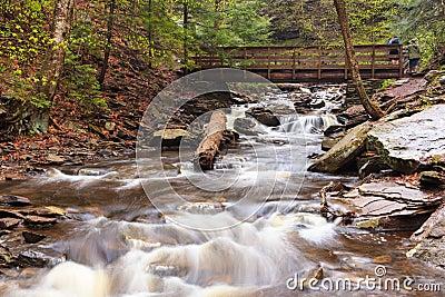 Kitchen Creek Ricketts Glen Park Pennsylvania