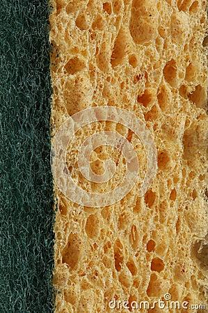 Kitchen sponge background