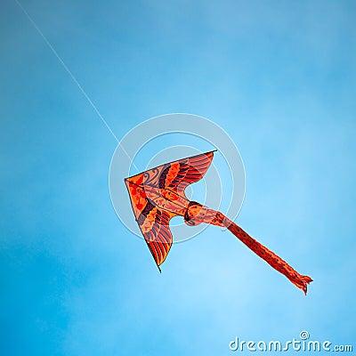 Free Kite Royalty Free Stock Photo - 3676775