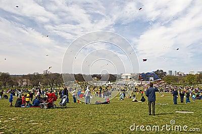 Kite Festival Editorial Stock Photo