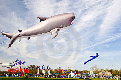 Kite Festival Editorial Photo