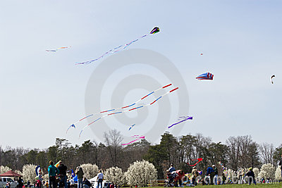 Kite Flying Frenzy Editorial Photo