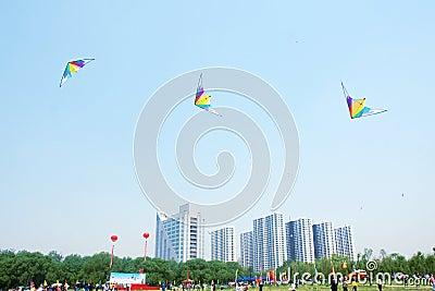 Kite game Editorial Stock Photo