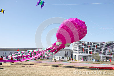 Kite game Editorial Photo