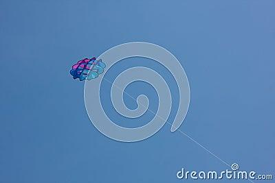 Kite High In The Sky
