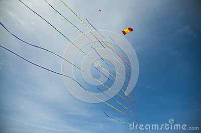 Kite with many tails